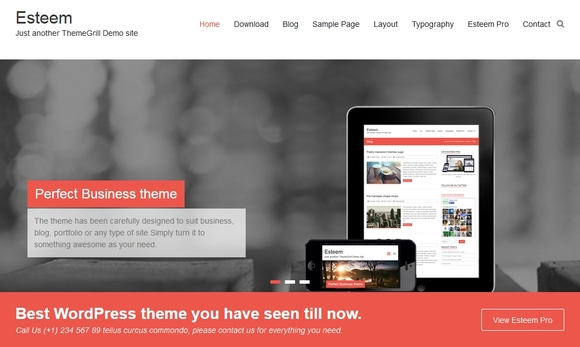 Esteem - wordpress theme free