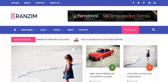 Ranzim - wordpress theme
