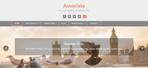 WEN Associate - free wordpress themes 2015