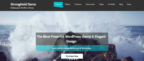StrongHold - wordpress free themes