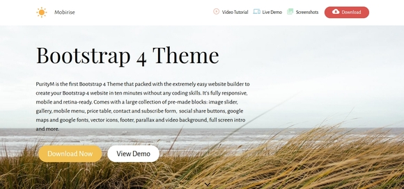 bootstrap 4 template
