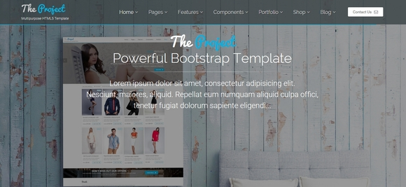 The Project - premium bootstrap templates