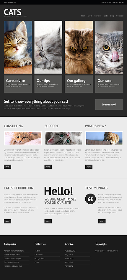 Cat WordPress Theme