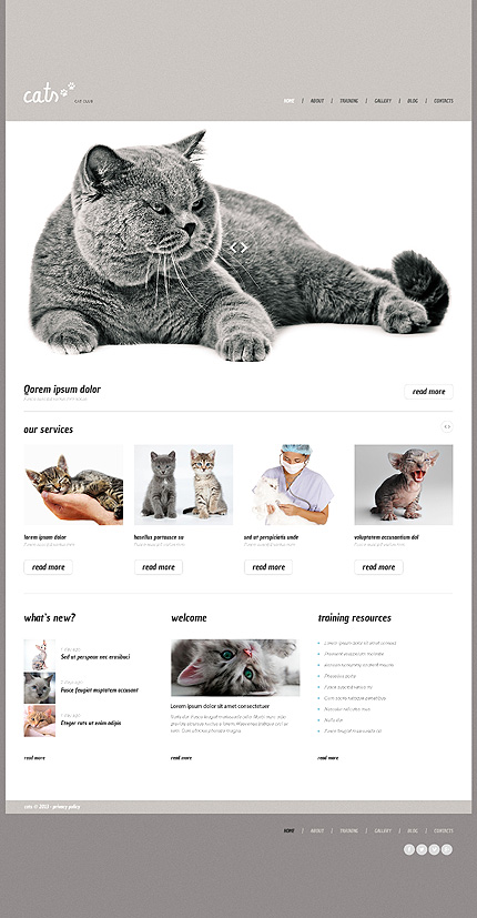 Cat Responsive WordPress Theme