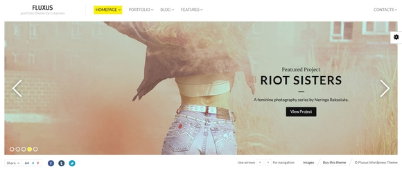 Fluxus - best wordpress themes 2015