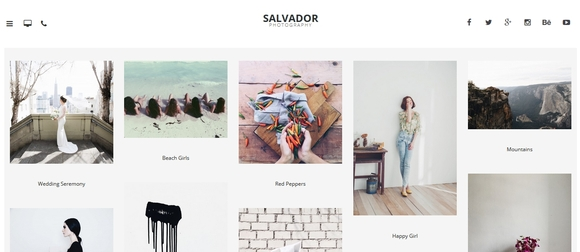 Salvador - best wordpress themes 2015