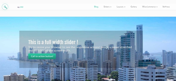 Customizr - business wordpress themes 2015