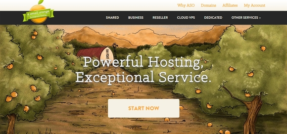 Asmallorange - cheap web hosting services