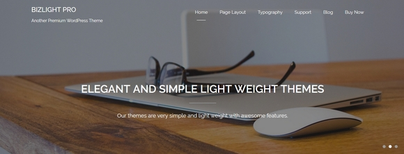 Bizlight - wordpress